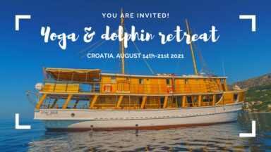 Yoga & dolphins retreat